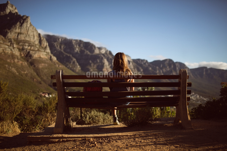 Rear view of woman sitting on benchの写真素材 [FYI02236076]