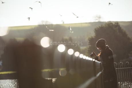 Woman taking photos on digital camera in parkの写真素材 [FYI02236263]
