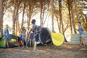 Young friends setting up their tents at countrysideの写真素材 [FYI02236911]