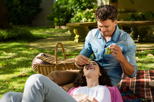 Man feeding grape to woman in parkの写真素材 [FYI02237359]