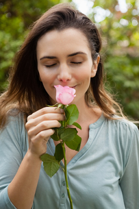 Beautiful woman with eyes closed smelling pink roseの写真素材 [FYI02237588]