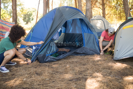 Male friends making tent on fieldの写真素材 [FYI02237666]