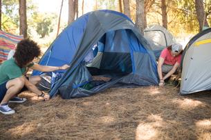 Male friends making tent on fieldの写真素材 [FYI02237666]