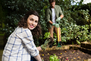 Smiling woman holding sapling plant in gardenの写真素材 [FYI02237681]