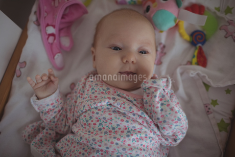 Cute baby lying in crib at homeの写真素材 [FYI02237683]