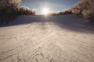Snowy landscape covered with ski tracksの写真素材 [FYI02237712]
