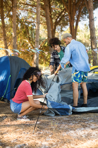 Young friends setting up tent on fieldの写真素材 [FYI02237750]