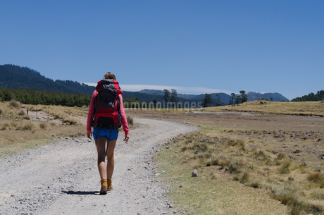 Rear view of female hiker with backpack walking on dirt roadの写真素材 [FYI02238363]