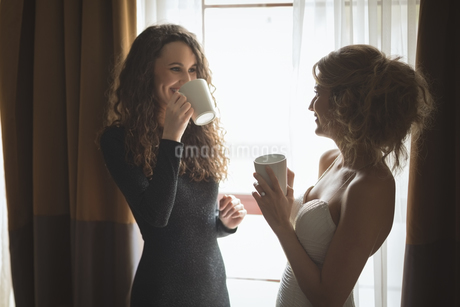 Bride and bridesmaid interacting while having a coffeeの写真素材 [FYI02238400]