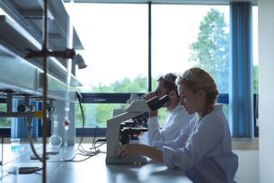 University students doing experiment on microscope in laboratoryの写真素材 [FYI02238448]