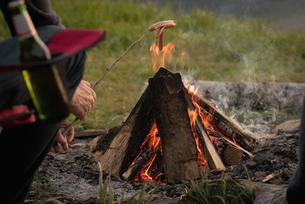 Man cooking sausage on campfireの写真素材 [FYI02238542]