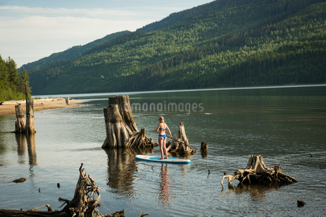 Rear view of woman paddleboarding by tree stumps in lakeの写真素材 [FYI02238672]