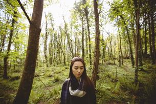 Woman hiking in countrysideの写真素材 [FYI02238950]