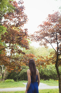Rear view of woman walking in forestの写真素材 [FYI02238984]