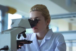 University student doing experiment on microscope in laboratoryの写真素材 [FYI02239136]