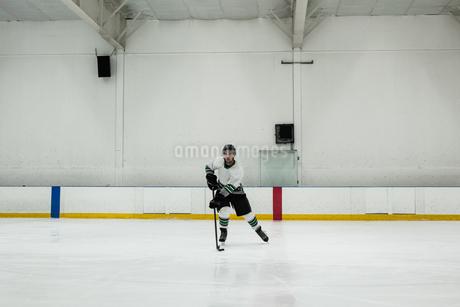 Male player practicing ice hockeyの写真素材 [FYI02239148]