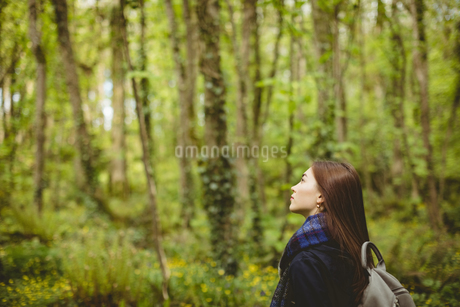 Woman standing in forestの写真素材 [FYI02239399]