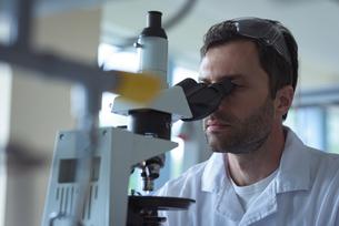 University student doing experiment on microscope in laboratoryの写真素材 [FYI02239405]
