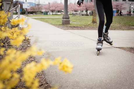 Woman skating in the parkの写真素材 [FYI02239423]