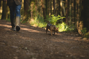 Man walking with his pet dog in forestの写真素材 [FYI02239543]