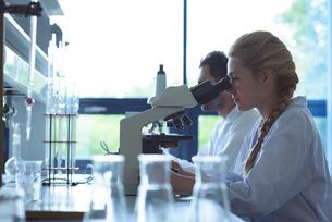 University students doing experiment on microscope in laboratoryの写真素材 [FYI02239654]
