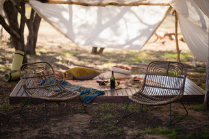 Picnic accessories in forestの写真素材 [FYI02239656]