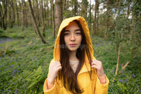 Beautiful woman standing in forestの写真素材 [FYI02239679]