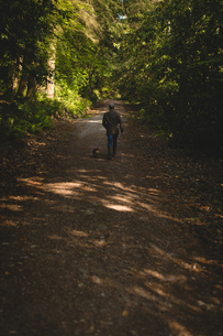 Man walking with his pet dog in forestの写真素材 [FYI02239838]
