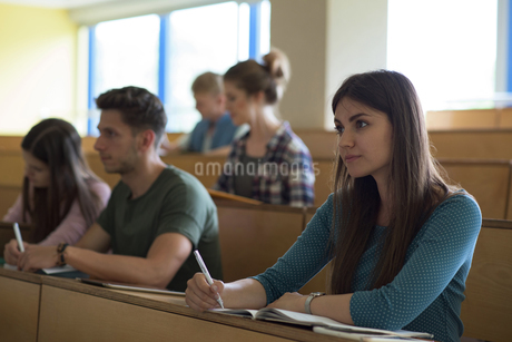 College students concentrating during lessonの写真素材 [FYI02239912]