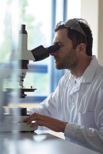 University student doing experiment on microscope in laboratoryの写真素材 [FYI02239994]