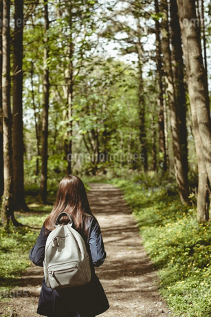 Rear view of woman hiking in countryside at forestの写真素材 [FYI02240037]
