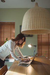 Woman using laptop in drawing roomの写真素材 [FYI02240121]