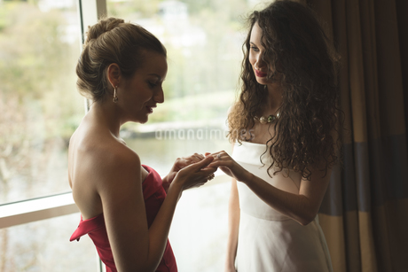 Bride showing wedding ring to bridesmaidの写真素材 [FYI02240127]