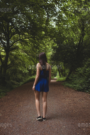 Woman walking on path in forest on a sunny dayの写真素材 [FYI02240138]