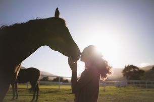 Silhouette woman kissing horse at farmの写真素材 [FYI02240147]
