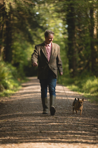 Man walking with his pet dog in forestの写真素材 [FYI02240338]