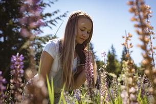 Girl smelling flower in fieldの写真素材 [FYI02240566]