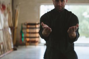 Man practicing kung fuの写真素材 [FYI02240711]