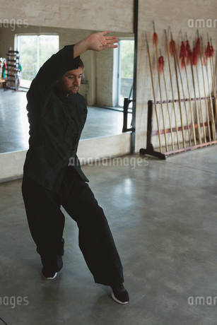 Man practicing kung fuの写真素材 [FYI02240785]