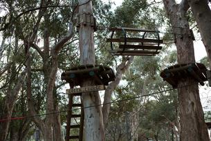 View of wooden adventure sports equipmentの写真素材 [FYI02240818]