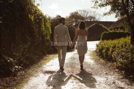 Bride and groom walking hand in hand in the gardenの写真素材 [FYI02241041]