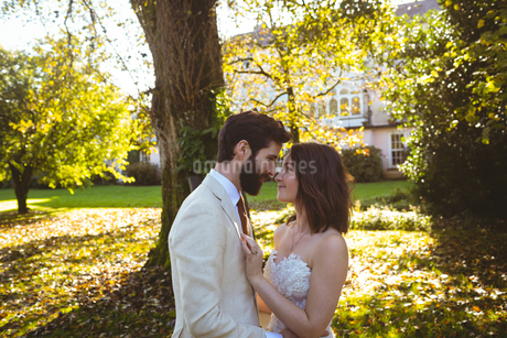 Bride and groom looking into each other eyes in the gardenの写真素材 [FYI02241080]