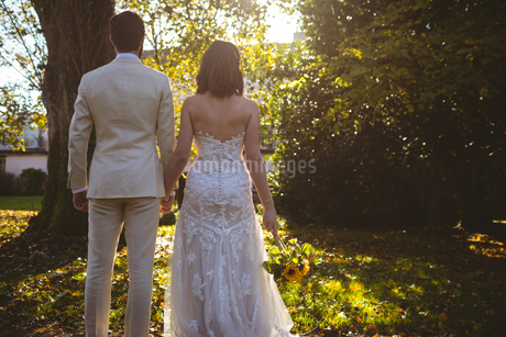 Bride and groom holding hands and standing in the gardenの写真素材 [FYI02241176]
