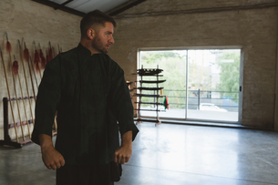 Kung fu fighter training martial artsの写真素材 [FYI02241183]