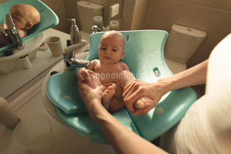 Mother washing a baby in baby bath seat in bathroom sinkの写真素材 [FYI02241354]