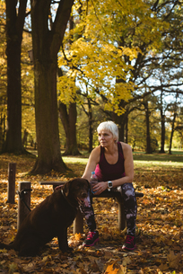 Thoughtful senior woman in a park with her dogの写真素材 [FYI02241576]