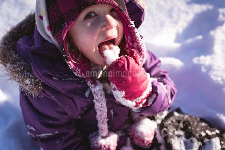 Portrait of cute girl licking snowの写真素材 [FYI02241619]