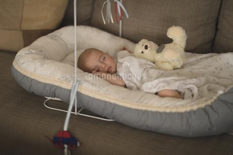 Cute little baby sleeping in the crib on sofaの写真素材 [FYI02241684]