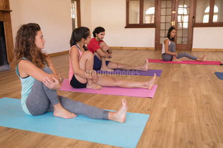 Group of people performing yoga exercise in fitness clubの写真素材 [FYI02241724]