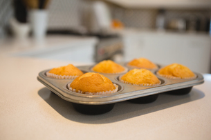 Muffins in baking tray at homeの写真素材 [FYI02241903]